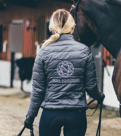 Nova Equestrian Horses Sale 2