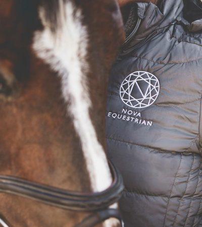 Nova Equestrian Horses Sale 3