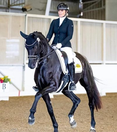 Nova_Dressage_Horse_Forsale_Lightfeet_05
